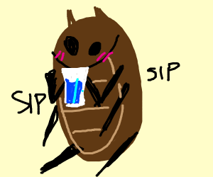 cockroach drinking a glass of water