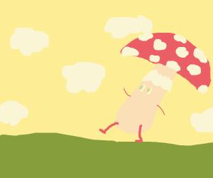 Mushroom taking a walk