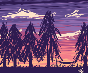 sunset forest with a silhouette in foreground