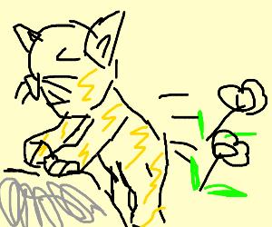 cat pooping flowers