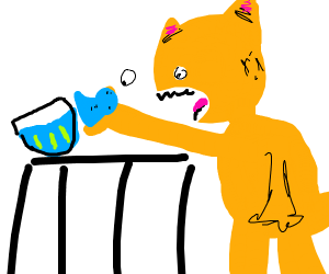Orange cat eats fish while making eye contact