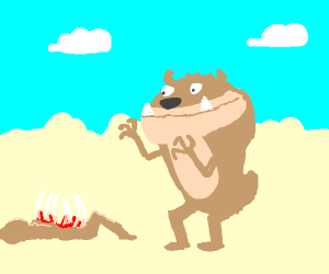 Tasmanian Devil finds DEAD MEAT! OWO
