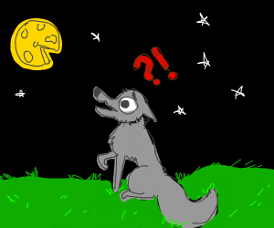 A Wolf and a Moon made of Cheese