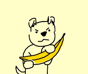 Dog protec banana