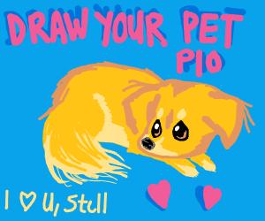 Draw your pet! (P.I.O)