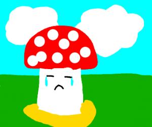 Toad pissed himself