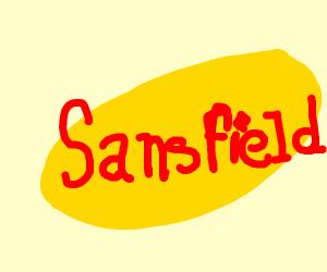 Sansfeld. It's seinfeld but sans.