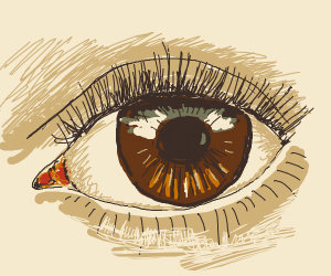 An extremely detailed eye