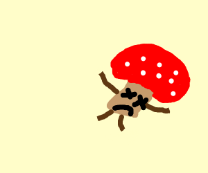 a mushroom turning dead