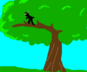 Ninja in a tree