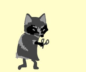 Raccoon running with scissors