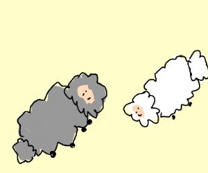 anthro sheep