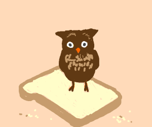 An owl on top of a slice of bread