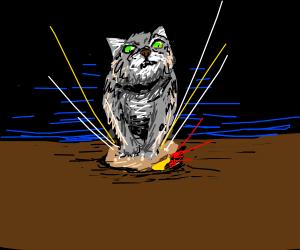 Cat stuffing a hamburger into a hole
