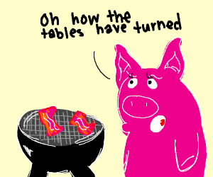 pig frying bacon