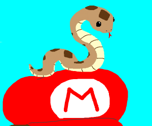 A snake is on Mario's Head.
