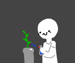 Guy spraying water on plants
