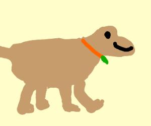 Happe Pupper :)