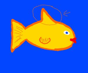 A fish's fin