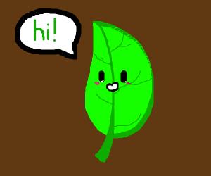 A leaf saying hi