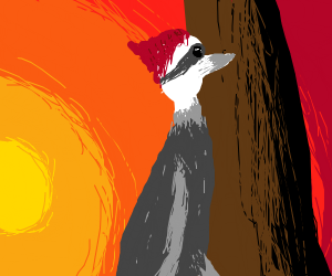 Wood pecker with sunset