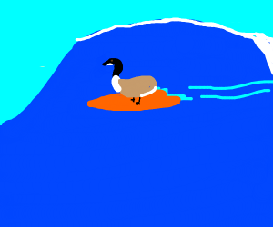 Goose Surfing