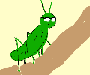 Grasshopper With Glasses Drawception