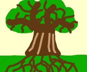 A very branch-y tree