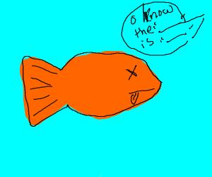 Fish dying