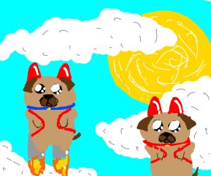 Jetpack pugs