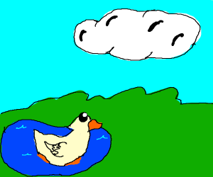 A duck looking a a cloud in the sky