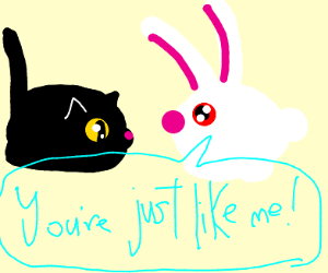 Rabbit thinks Rabbits and cats are the same