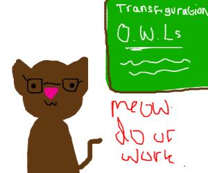 Professor elderly cat