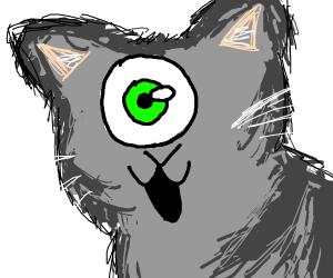 cyclopes cat