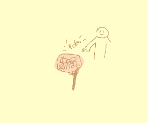 person pokes a brain