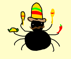 mexican spider