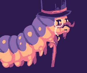 Handsome, yet highly vain caterpillar