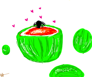 A spider likes watermelons