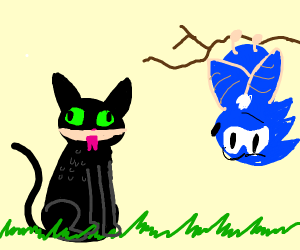 Toothless the Cat and Sonic the Bat