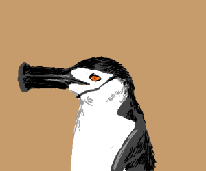 Nooting Penguin