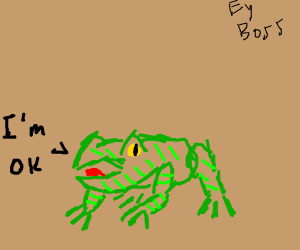 The frog is ok.