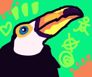 Hawaiian toucan