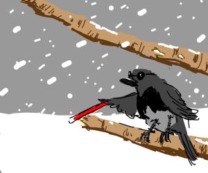 Eyeless black-chested robin