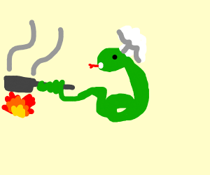 Snake cooking your dinner