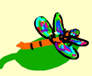 Dragonfly Crawling