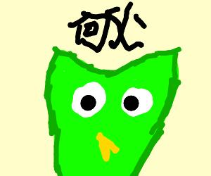 duolingo bird saying something in japanese