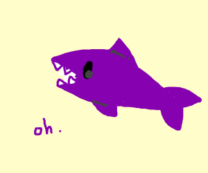 purpl shork