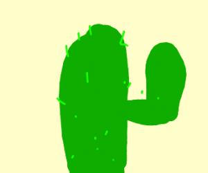 It's a cactus!