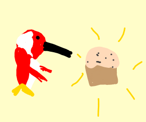Woodpecker Baking