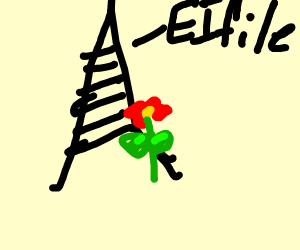 Flowers in front of France